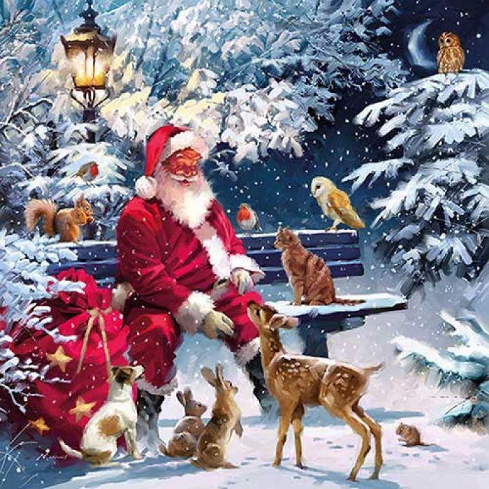Servet Santa on Bench
